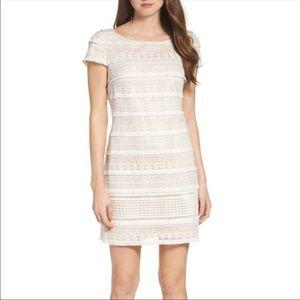 Eliza J Fringed Lace Sheath Dress